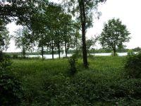 Gifhorn20110032